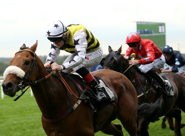 Dakota Gold was too good for his rivals at Nottingham