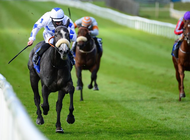 Lustown Baba bolted up at the Curragh