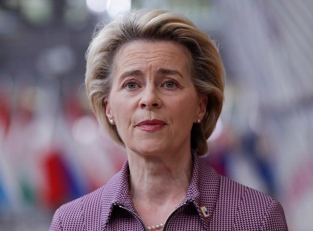 European Commission President Ursula von der Leyen (Oliver Hoslet/AP)