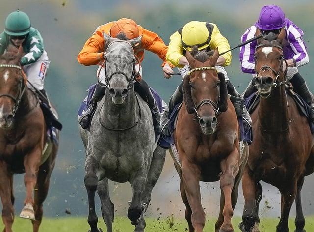 Skalleti (grey) ran a fine race in defeat at Ascot