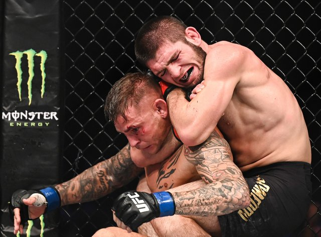 Khabib beat Poirier by submission in his last fight