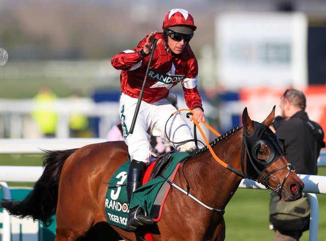 Tiger Roll has been unstoppable at Aintree