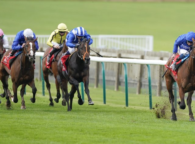 One Ruler was impressive in the Autumn Stakes