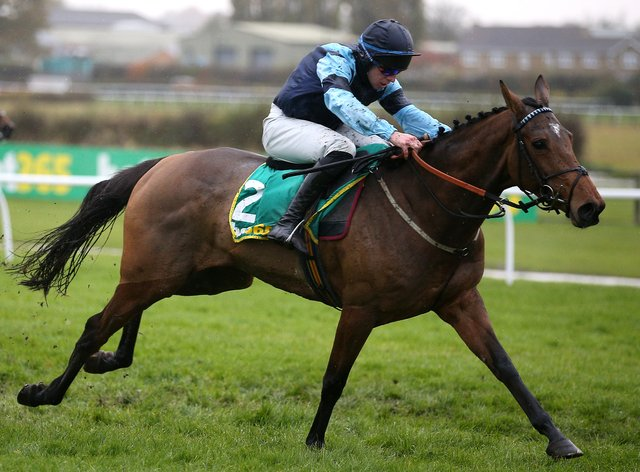 Indefatigable is set to have a prep run on the Flat at Lingfield ahead of a return to hurdles