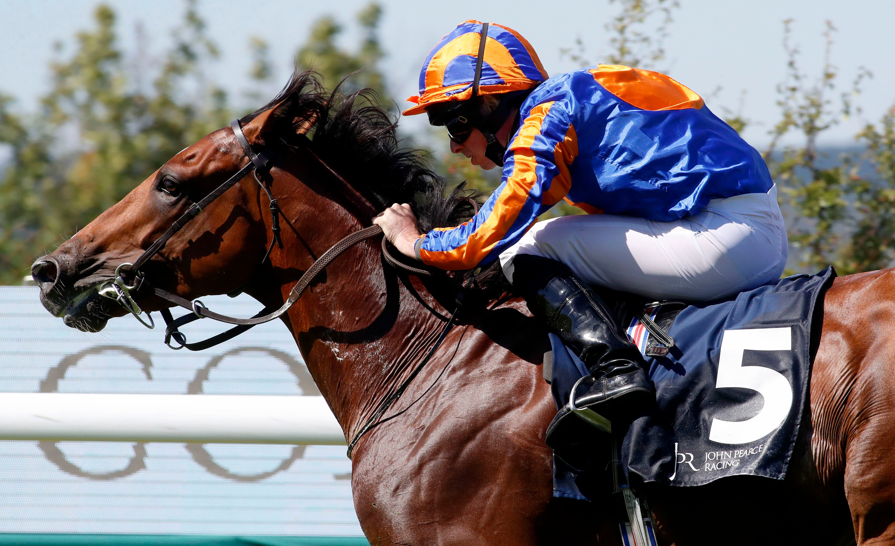 O'Brien hoping Arc absence can work in Mogul's favour at Keeneland