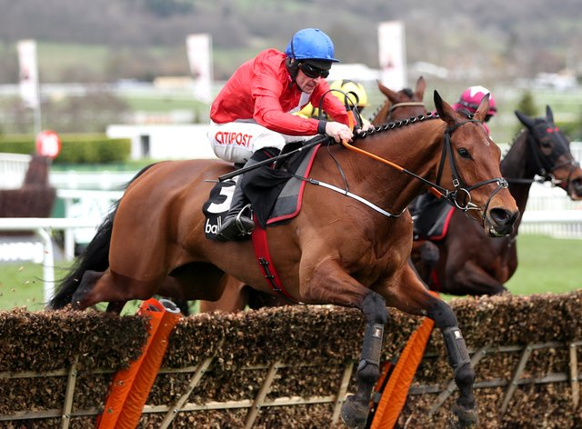 Envoi Allen makes his chasing debut on Friday