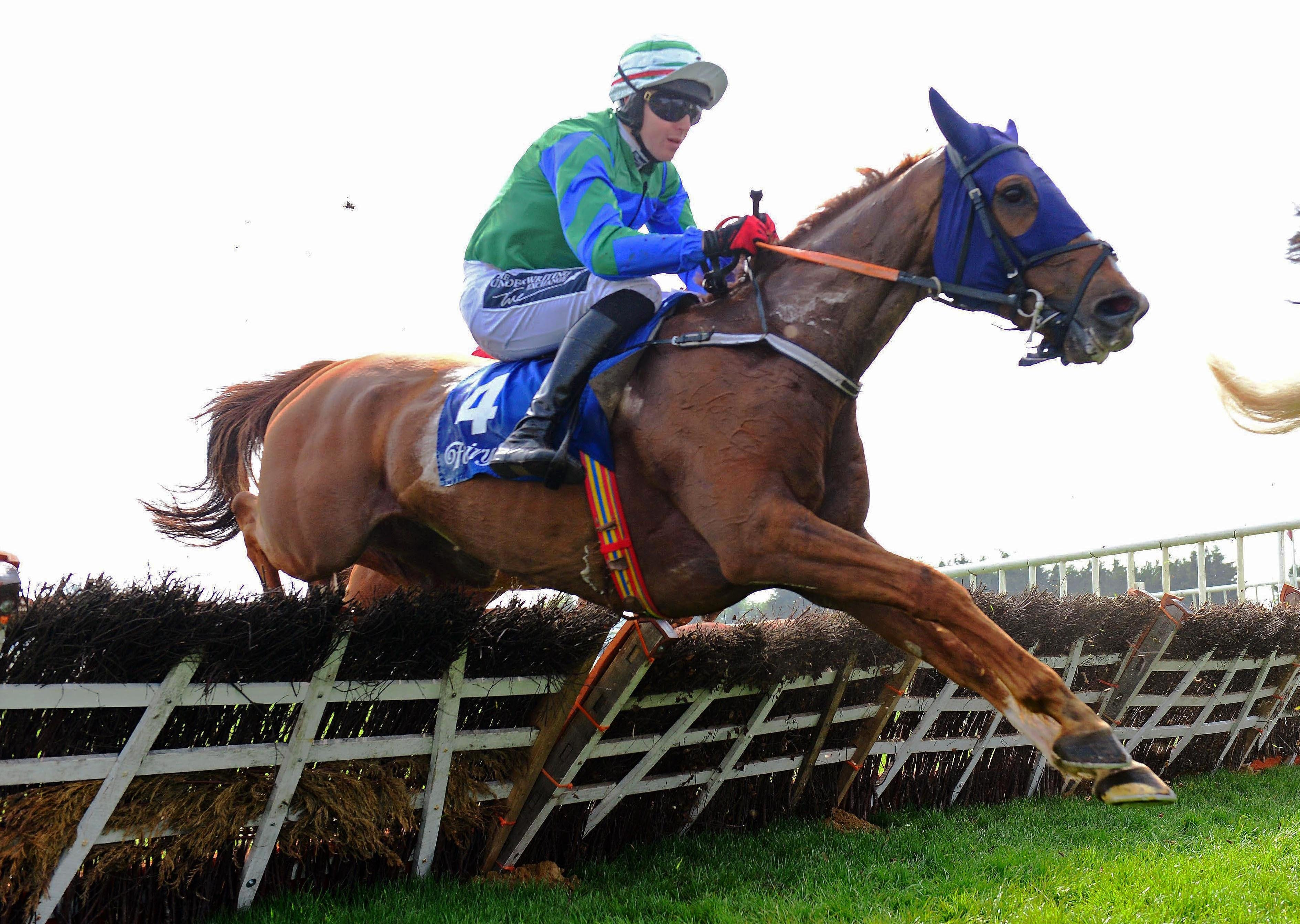 Lismullen Hurdle option for Ronald Pump