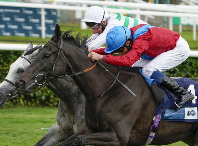 Sorrel (red) seen here winning at Doncaster