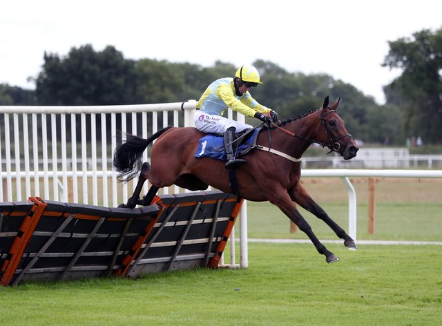 Hiconic could be bound for Aintree after a gallant effort in defeat at Wetherby