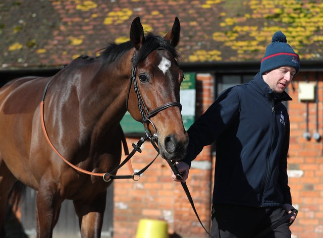 Greaneteen represents Paul Nicholls in the Haldon Gold Cup