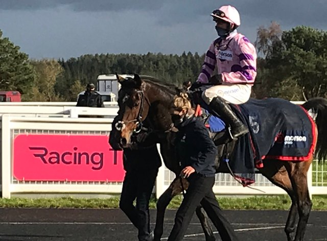 Greaneteen was the highlight of a big day for Paul Nicholls and Harry Cobden at Exeter
