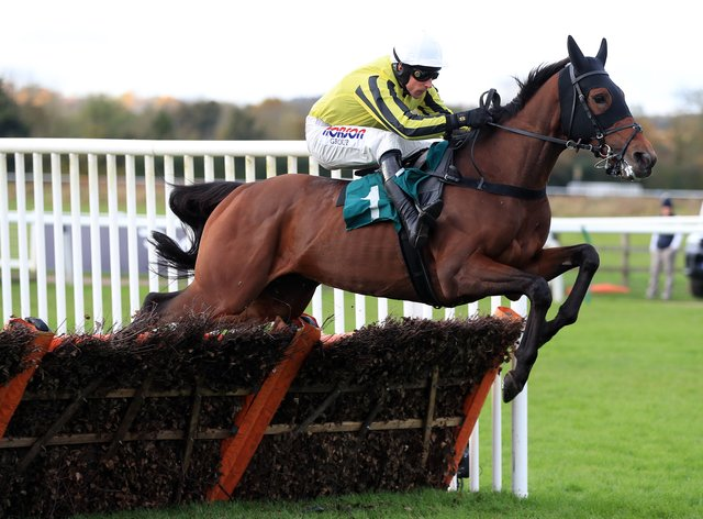 Allmankind goes chasing at Warwick
