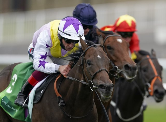 New Mandate (left) winning the Royal Lodge at Newmarket
