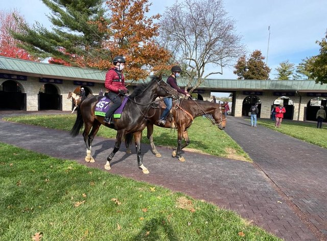 Kameko pleased connections in a pre-Breeders' Cup Mile workout