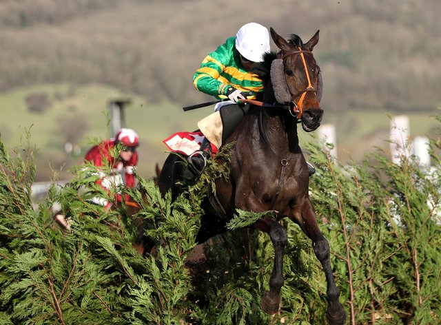 Easysland is set to make his seaonal debut over the cross-country fences at Cheltenham