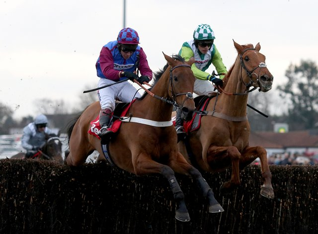 La Bague Au Roi could be heading to the Ladbrokes Trophy at Newbury
