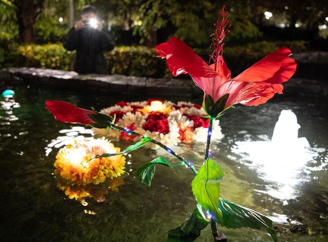Floating flower display unveiled to mark Diwali