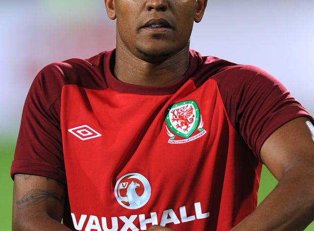 Soccer – 2014 FIFA World Cup – Qualifier – Group A – Serbia v Wales – Karadjordje Stadium