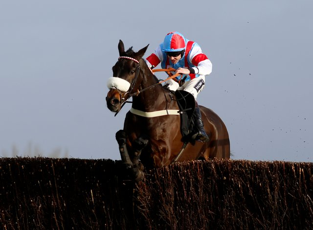 Saint Calvados will not make his return to action next weekend after meeting with a setback