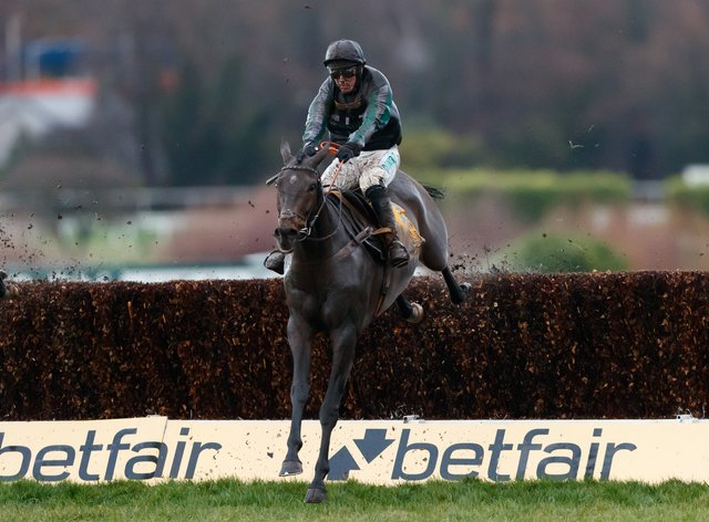 Altior will return in the Tingle Creek Chase