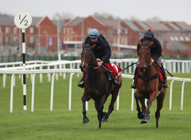 Paisley Park (left) in action at Newbury on Tuesday