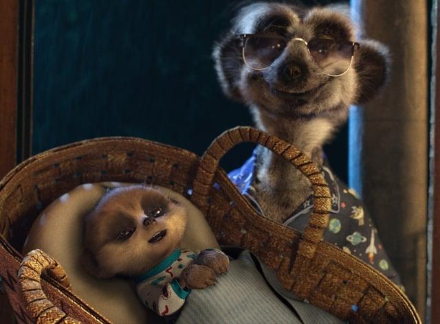 CompareTheMarket meerkat advert
