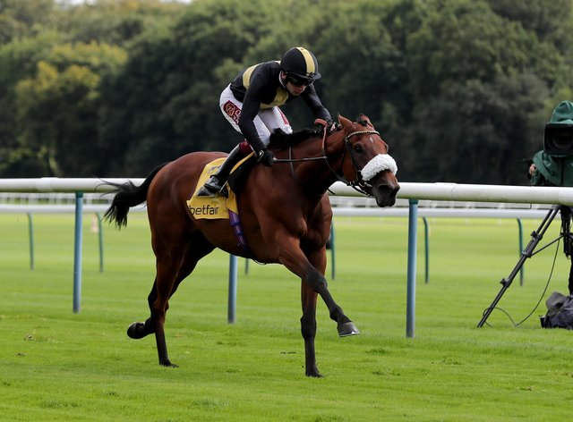 Ranch Hand who will head to Haydock next month after making a winning debut over hurdles at Exeter