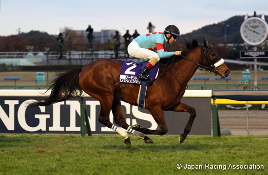 Almond Eye won the Japan Cup for a second time