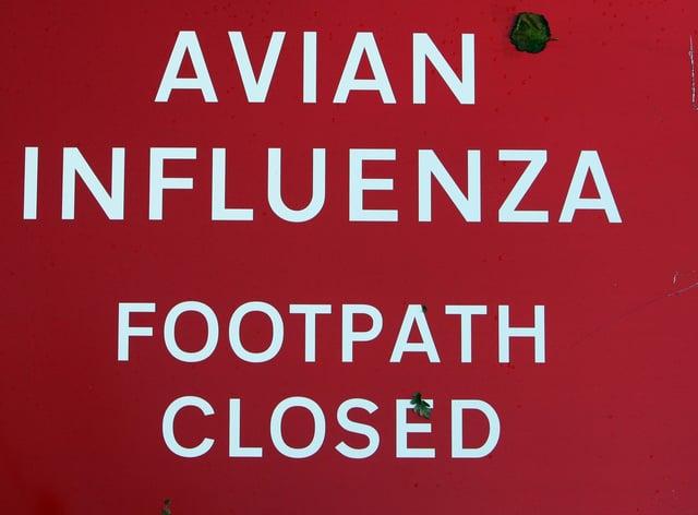 An 'Avian influenza. Footpath closed' sign