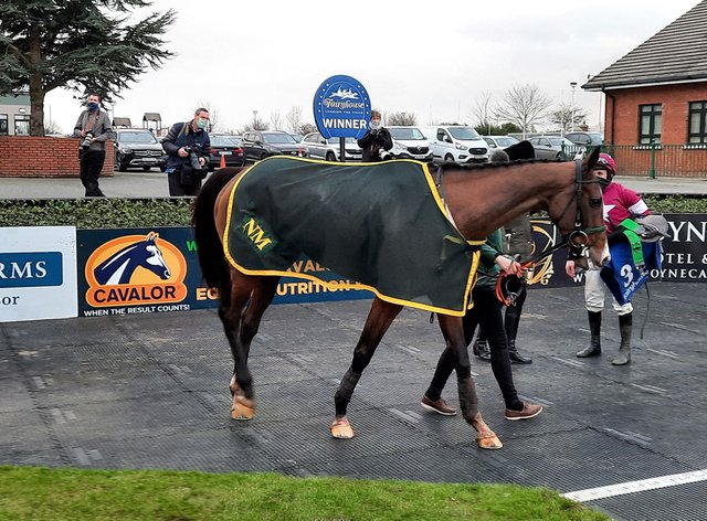 Daly Tiger after his victory in the Dan & Joan Moore Memorial Handicap Chase at Fairyhouse