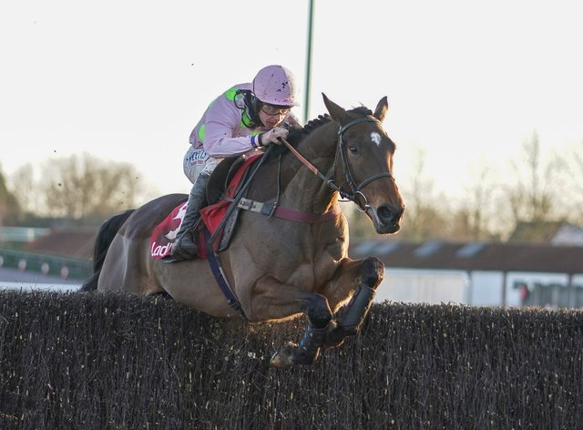 Royale Pagaille has several options at Cheltenham