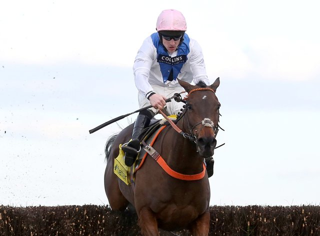 Waiting Patiently has been taken out of the Queen Mother Champion Chase at Cheltenham