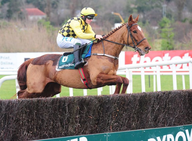 Melon may be ridden more conservatively in the Irish Gold Cup