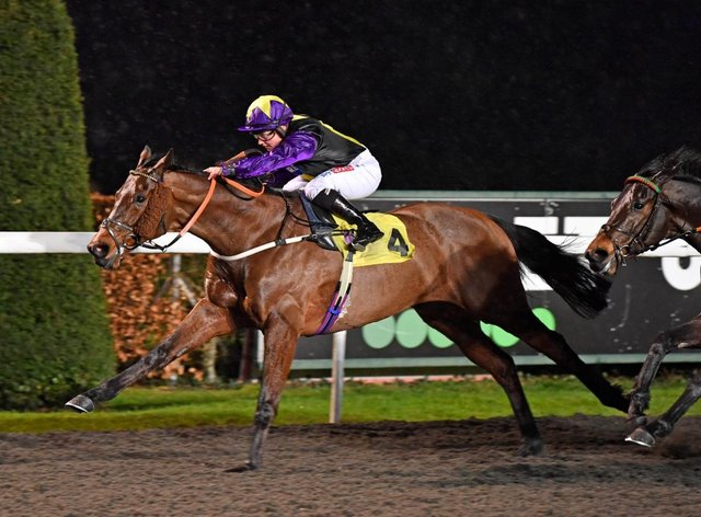 Rainbow Dreamer is set for All-Weather Championships Finals Day following this victory at Kempton