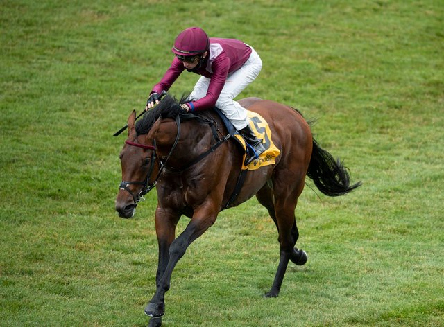 Mishriff could have the Juddmonte International as a major objective this summer