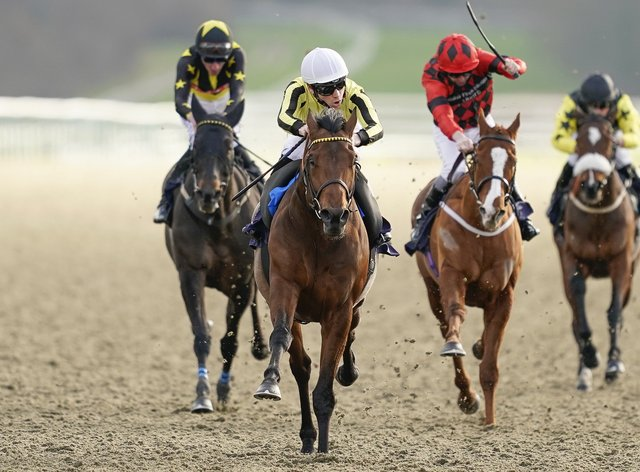 Father Of Jazz (centre) returns to Lingfield for the Winter Derby