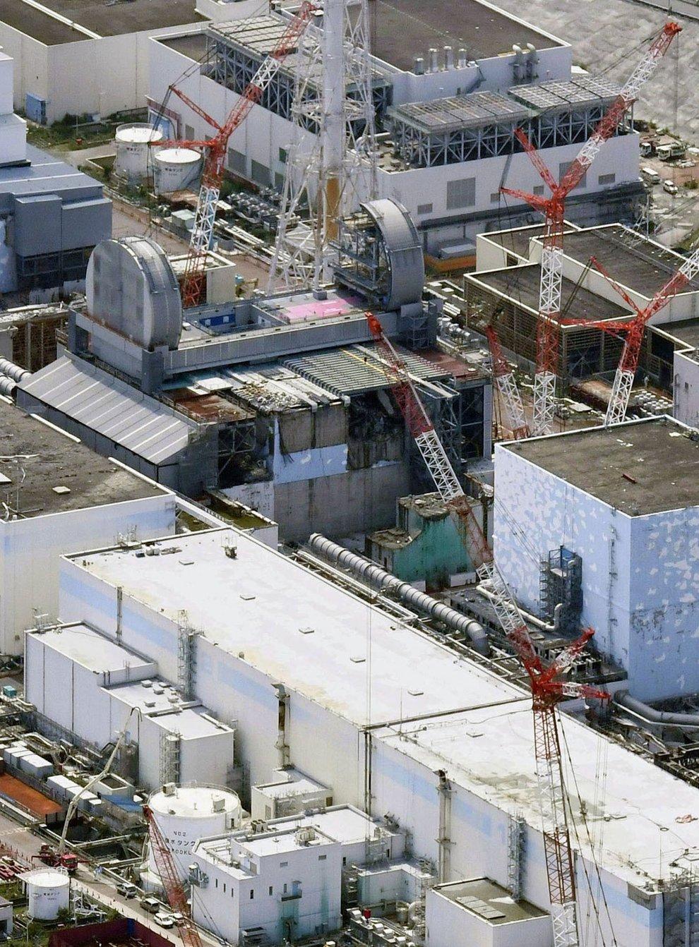 The Fukushima reactor