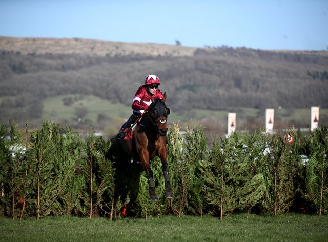 Tiger Roll bounds clear to win again
