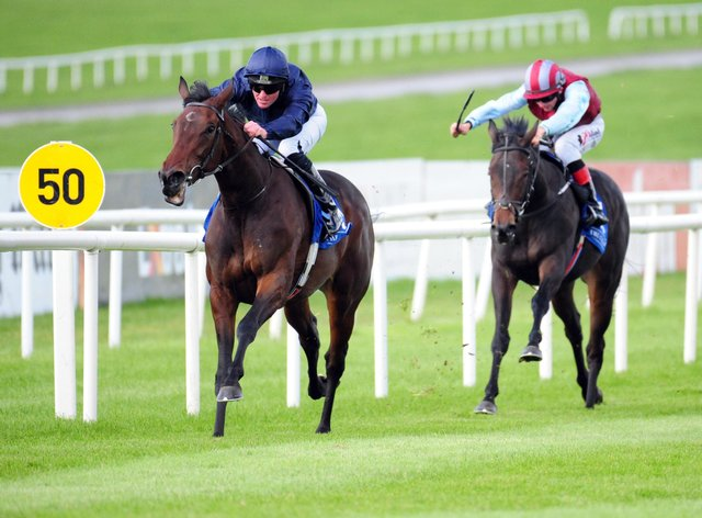 Santa Barbara is the new 1000 Guineas favourite