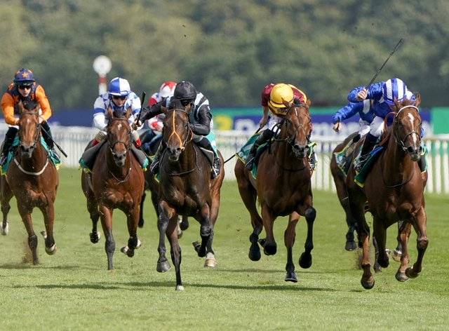 Albasheer (right) finishing second to Chindit (third right) in the Champagne Stakes at Doncaster (