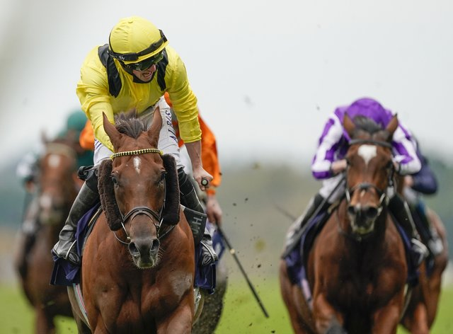 Addeybb (left) and Tom Marquand had to settle for second in defence of their Ranvet Stakes title