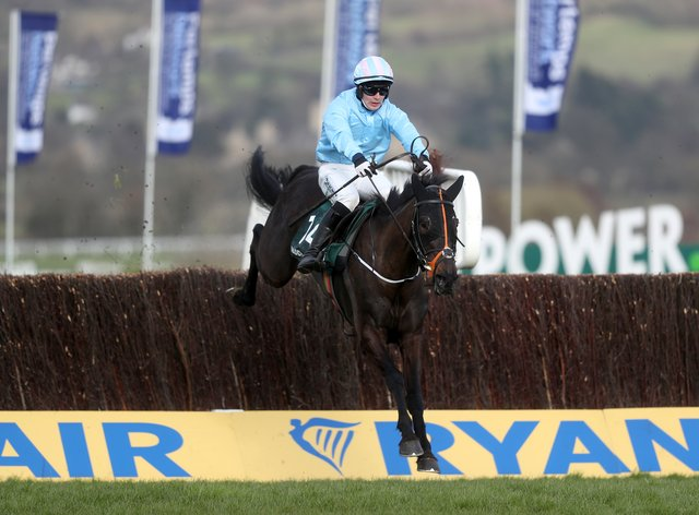 The Shunter won the Paddy Power Plate Handicap Chase at the Cheltenham Festival