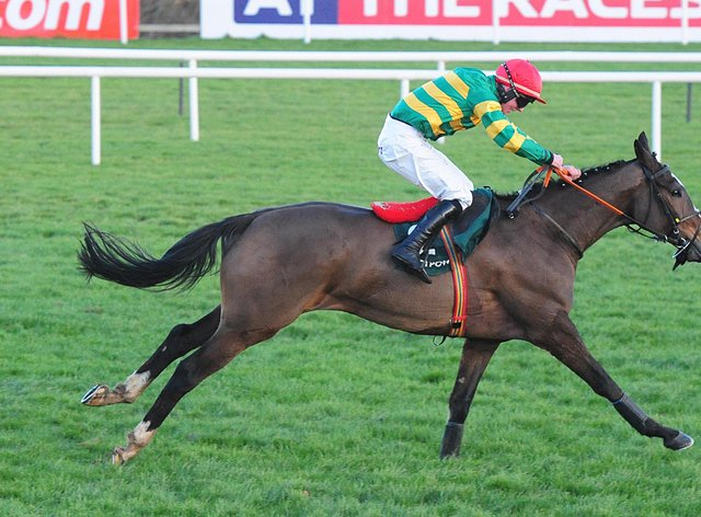 Anibale Fly still requires a jockey to be finalised for the National