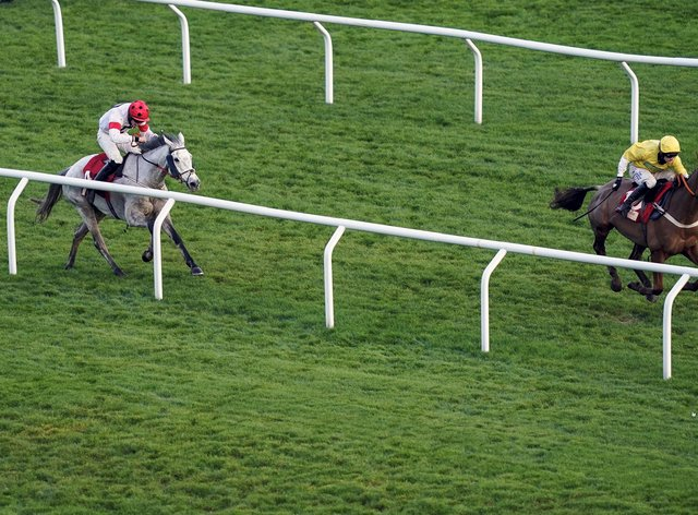 Some Neck (grey) is not yet guaranteed a run in the Randox Grand National