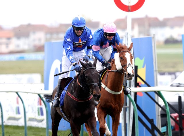 Mighty Thunder (left) gets up to win the Scottish Grand National at Ayr