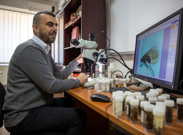 Professor Halil Ibrahimi looks under a microscope at an insect named Potamophylax coronavirus inside a lab in Pristina, Kosovo