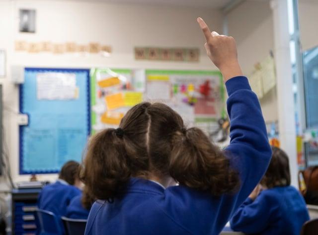 A primary school class