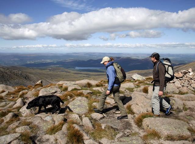 Walking the dog, Cairngorm National Park (Alamy/PA)
