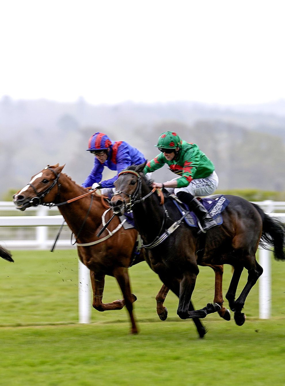 Stradivarius on the way to victory at Ascot