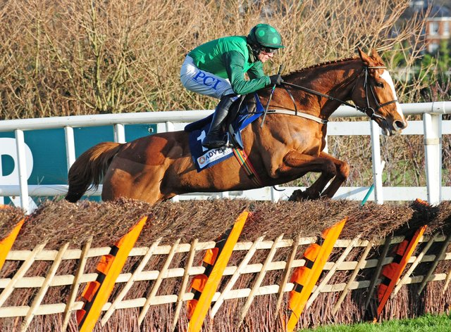 Concertista is one of four runners for Willie Mullins in the Mares Champion Hurdle